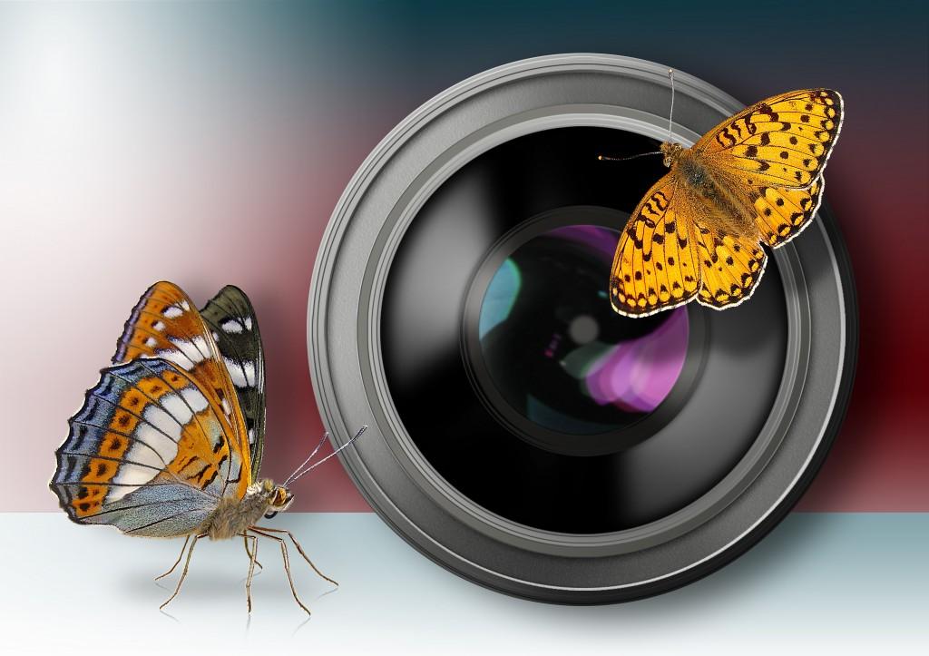 Kameralinse Objektiv